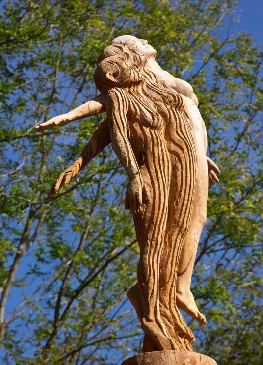 Art and nature meet in the Arte Stenico wood