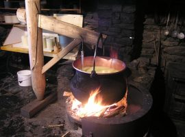 Cheese making process on open fire