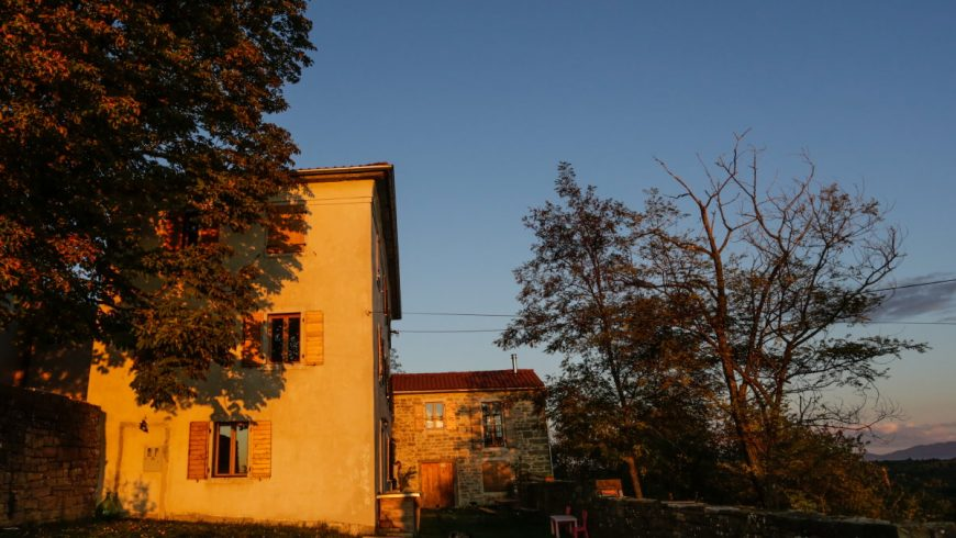 The Sunny hill permaculture homestead