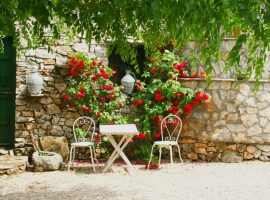 Chairs and table in a blooming corner of the garden