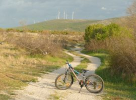 Bike rental at Kalpić