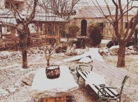 Kalpić garden in winter