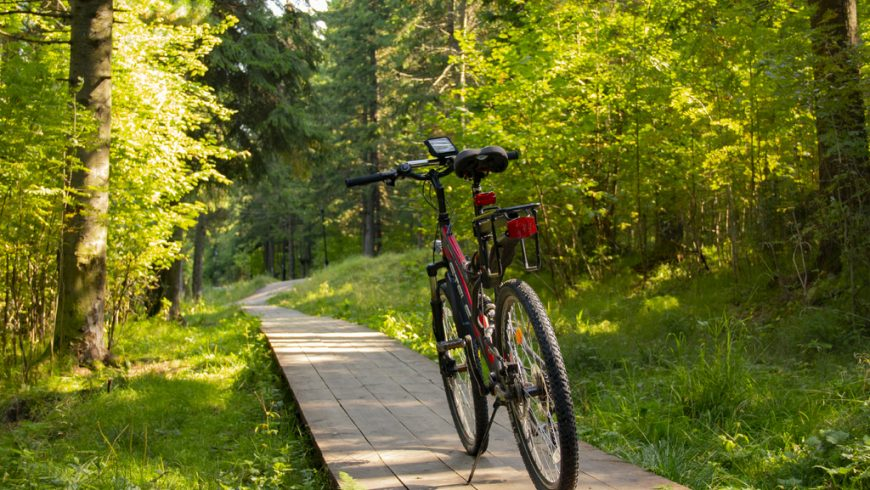 Top Tips For Eco-Friendly Travel: travel by bicycle