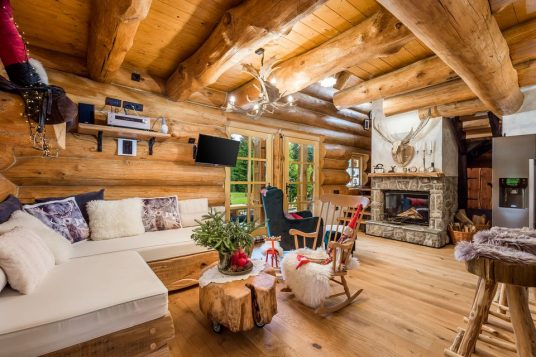 Living room with fireplace in Divjake Log Home eco chalet in Croatia
