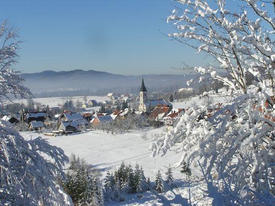 Town of Ravna Gora seen from afar.