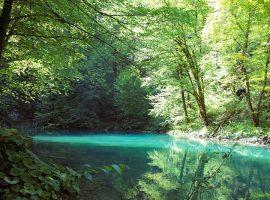 Kupa river in Gorski Kotar, near Divjake Log Home