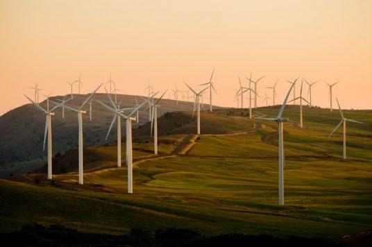 renewable energy sources, wind farms