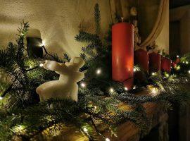 Little christmas decoration in Divjake Log Home