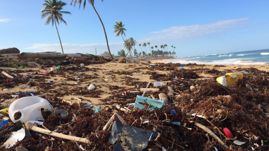 One of the thousends of plastic contaminated beaches on the world,