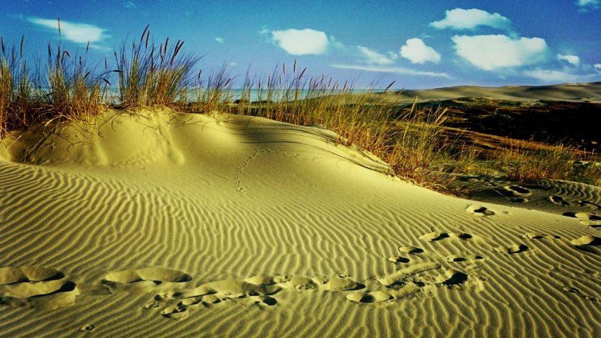 carboon footprint tourism