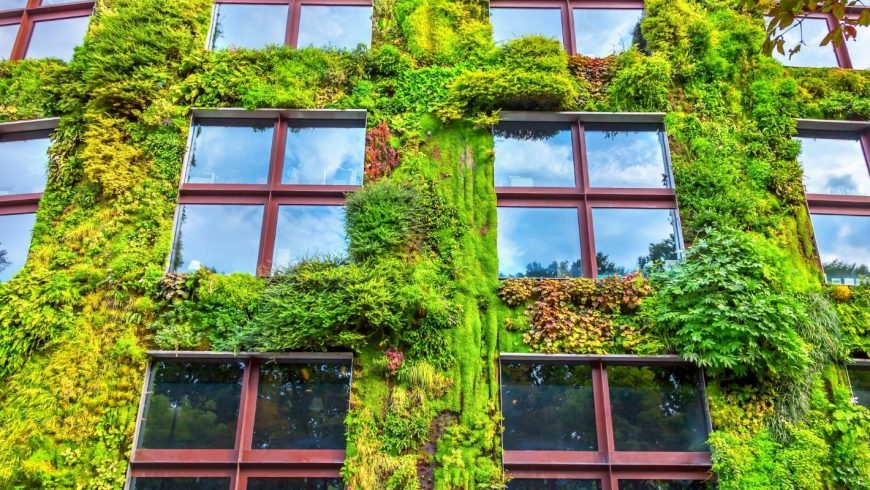 green wall building
