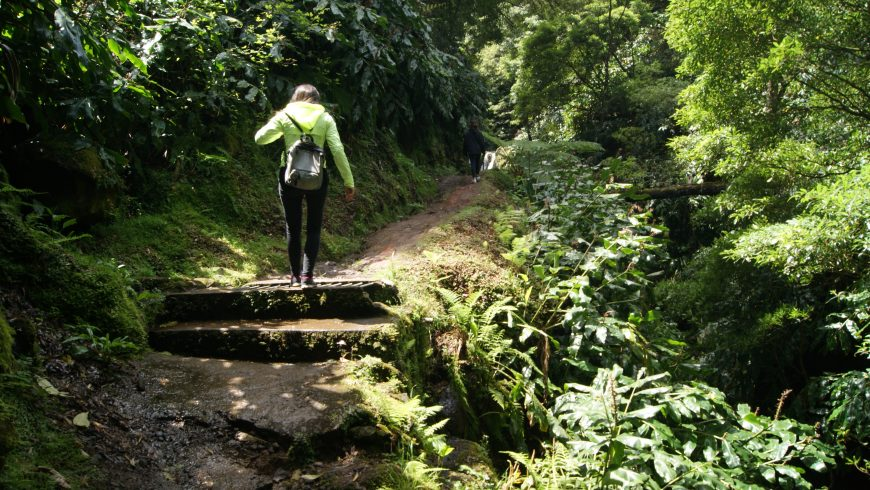 Azores Natural Park.