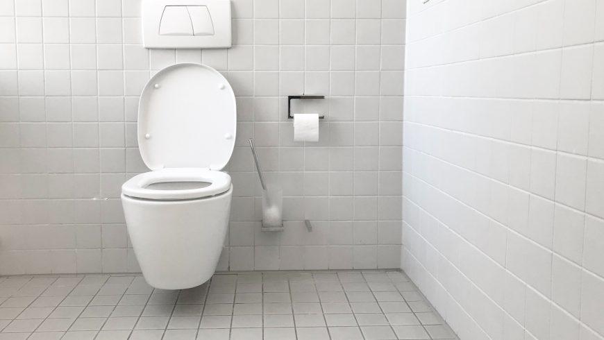 dual-flush toilet