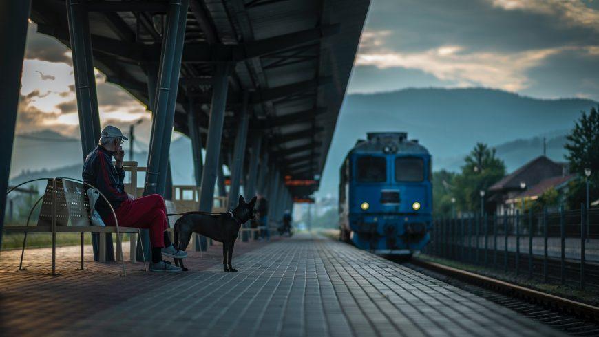 Photo by Amariei Mihai on Unsplash