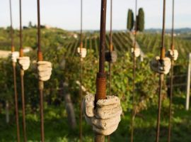 Orme su la court vineyard and museum italy