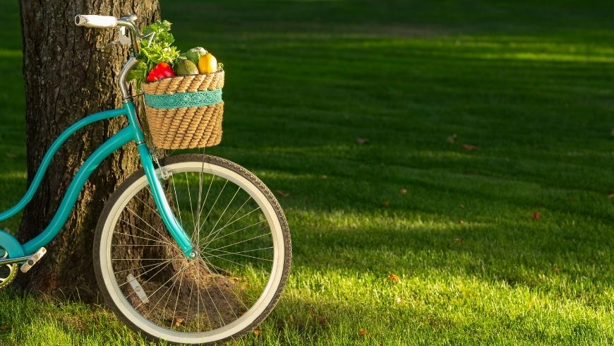 bicycle and eco-friendly products
