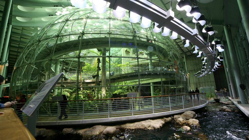 Inside the Top Green Museum in the World