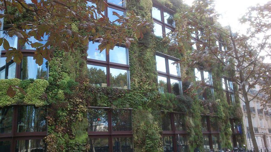 The Green Museum Quai Branly in Paris