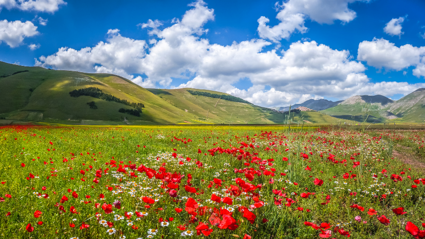 Discover the benefits of nature in the green of Umbria