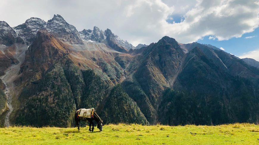 trekking Ghati India