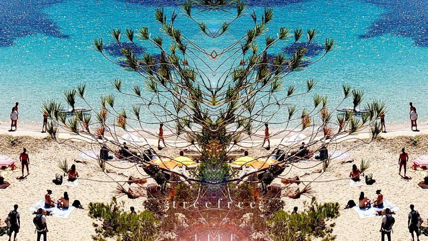 Tree of Life by Flavio Kampah