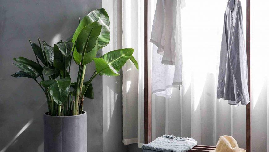 eco-friendly shopping tips: minimal lifestyle