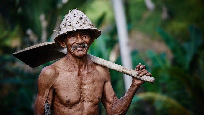 farmer in asia