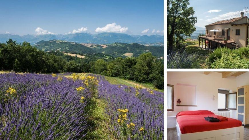 Agriturismo Amargi, Italy's blossom