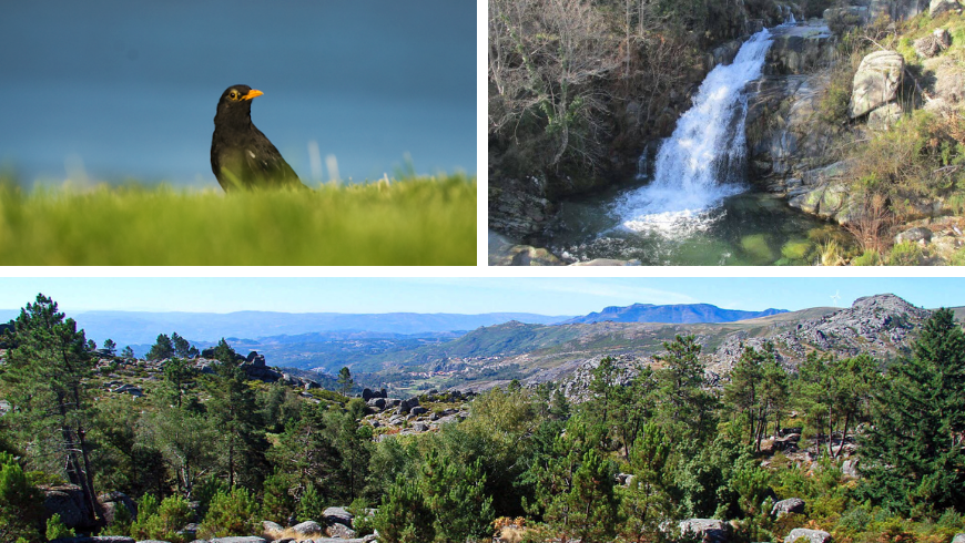 Natural Parks in Portugal. Photos by wikimedia.org, caminhando.pt, visitportoandnorth.travel