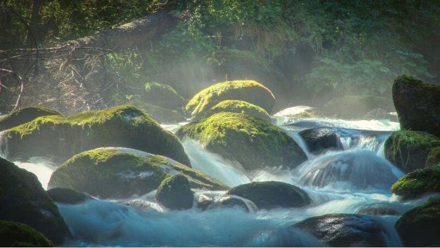 Pison waterfall near Dimaro Folgarida