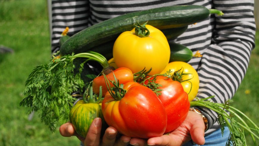 growing your own fruits and vegetables