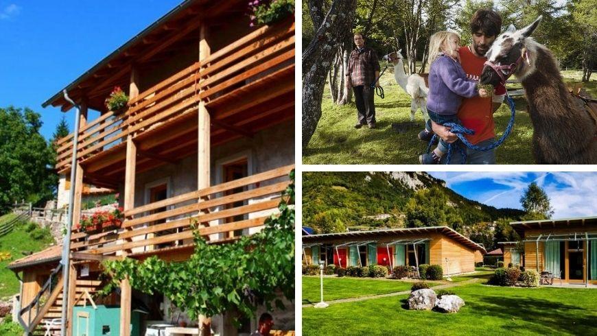 Green accommodations at lake Nembia