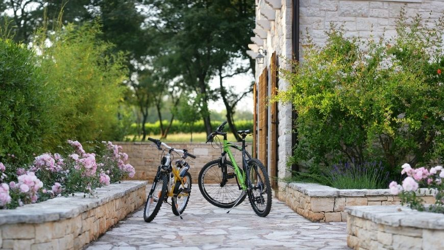bikes, Sustainable Transportation Options