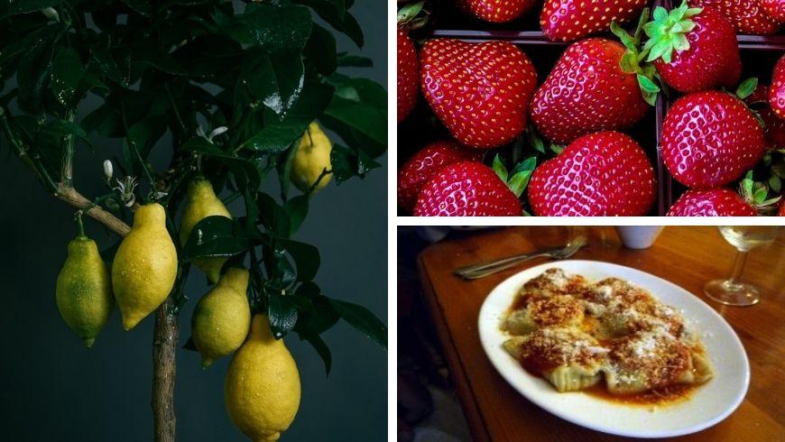 Food specialties of Gozo
