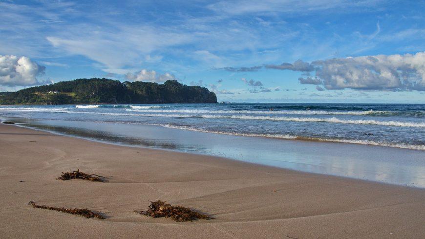 Hot Water Beach, beaches new zealand
