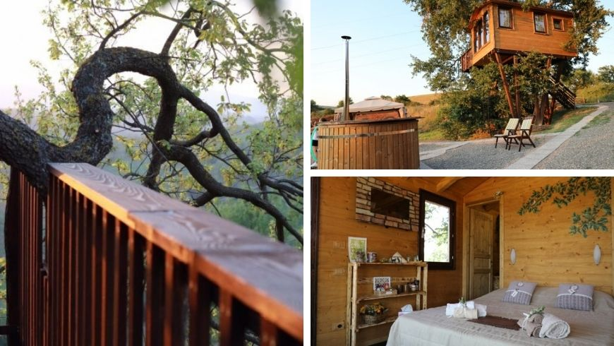 Tree and room at Glumping Il Sole, Tuscany
