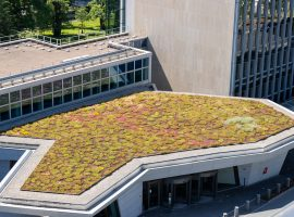 Green Roof at the WIPO Headquarters in Geneva