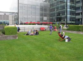 Green roof with people