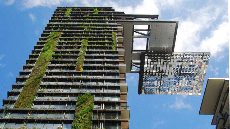 Vertical garden in Sydney