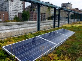 Solar panels on a green roof