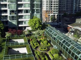 Green roof with garden