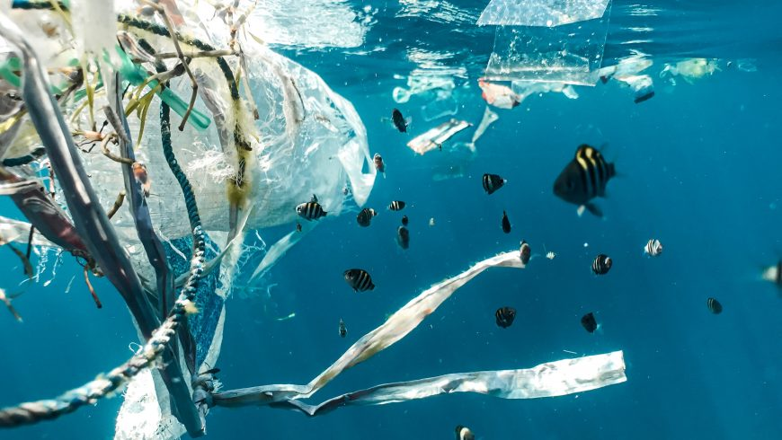 Polluted ocean to contrast climate change