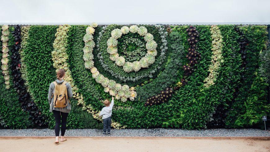 living walls, plants, nature, people